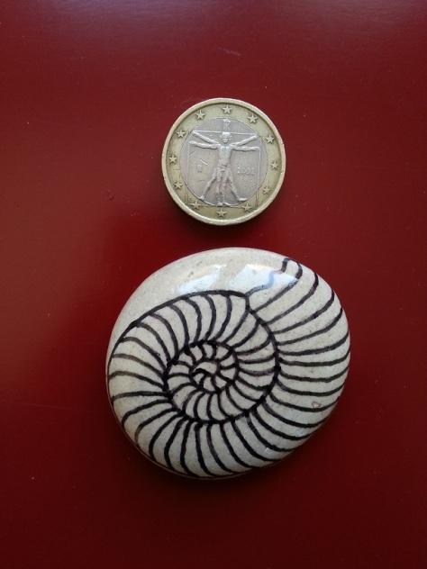 Fossil - Magnet.jpg